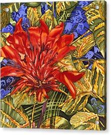 Tiger's Claw Acrylic Print