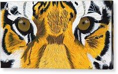 Tiger's Eyes Acrylic Print by Bav Patel