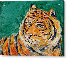 Tiger's Focus Acrylic Print by Kat Griffin