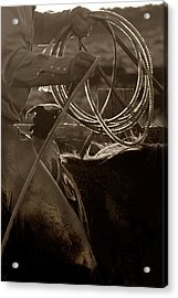 Tight Rope Acrylic Print by Dixie Wilson