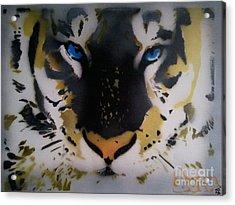 Tigrrr 2 Acrylic Print by Barry Boom