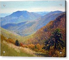Timber Hollow Overlook Acrylic Print