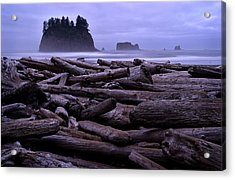Timber Acrylic Print by Robert Charity