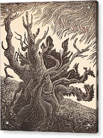 Timberline Traveler Acrylic Print by Maria Arango Diener