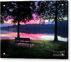 Time Alone Acrylic Print by Nancy E Stein