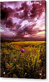 Time And Again Acrylic Print by Phil Koch