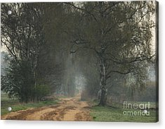 Time For Good Shoes In The Nature Acrylic Print