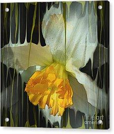 Time Acrylic Print by Hilda Lechuga