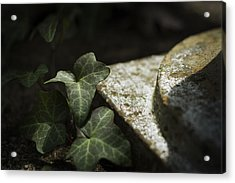 Acrylic Print featuring the photograph Time Is The Substance by Rebecca Sherman