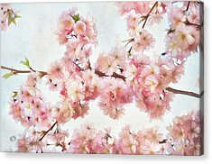Time To Bloom Acrylic Print by Gynt