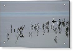 Time To Reflect Acrylic Print