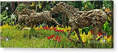 Time To Run Acrylic Print by Clare Bevan