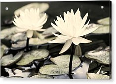 Acrylic Print featuring the photograph Timeless by Lauren Radke