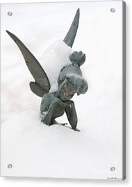 Tink In The Snow Acrylic Print by Susan Cliett
