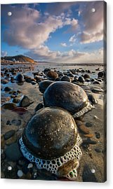 Tiny Giants Acrylic Print by Peter Tellone