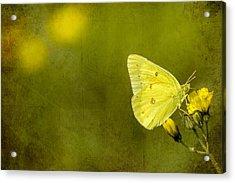 Tiny Green Dancer Acrylic Print by Bill Tiepelman