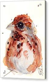 Tiny Sparrow Acrylic Print
