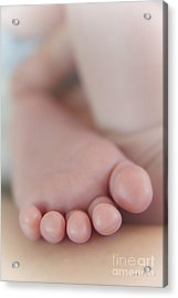 Acrylic Print featuring the photograph Tiny Toes by Vicki Ferrari