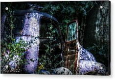 Tired Acrylic Print by Missy Richards