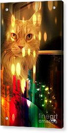 Tis The Season Acrylic Print by Judy Via-Wolff