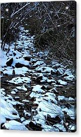 Tn Creek Acrylic Print by Joyce Brooks