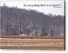To Every Thing There Is A Season Acrylic Print by Nikolyn McDonald