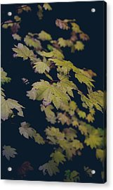 To Have You Near Acrylic Print by Laurie Search