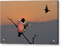To Kill A Mockingbird Acrylic Print by Bill Cannon