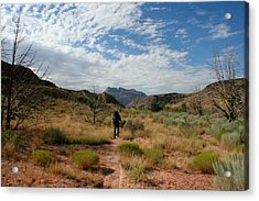 Acrylic Print featuring the photograph To The Desert by Jon Emery