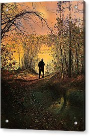 To The Fields Of Light Acrylic Print by Shirley Sirois