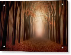 To The Light .......... Acrylic Print