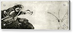 Toad And Butterfly - When There Is No Way Forward - Predator-prey System - Food Chain - Etching Series Acrylic Print by Urft Valley Art