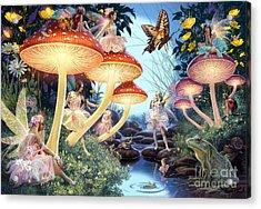 Toadstool Brook Acrylic Print