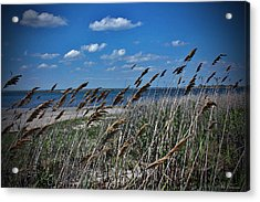Tobay Beach Li Acrylic Print