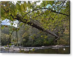 Toccoa River Swinging Bridge Acrylic Print by James Potts