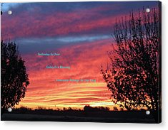 Today Is Best Acrylic Print by David  Norman