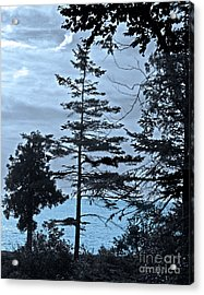Toft Point Blue Acrylic Print
