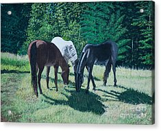 Together In Harmony. Acrylic Print