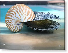 Together Acrylic Print by Paulette Maffucci