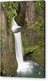 Toketee Falls In Douglas County, Oregon Acrylic Print by William Sutton