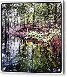 Toledo Bend Creek Acrylic Print