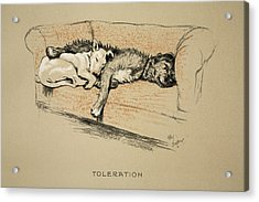 Toleration, 1930, 1st Edition Acrylic Print by Cecil Charles Windsor Aldin