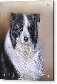 Acrylic Print featuring the drawing Tom by Elena Kolotusha