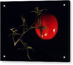 Tomato With Stem Acrylic Print by Patricia Januszkiewicz