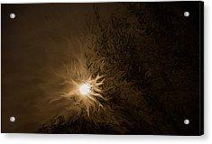 Tonight's Moon Acrylic Print
