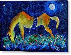 Too Long A Horse Acrylic Print