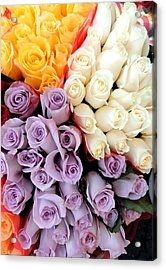 Too Lovely Acrylic Print