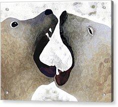 Toothy Bears Acrylic Print