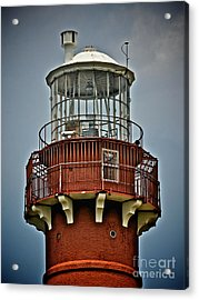 Top Of Barney 2012 Acrylic Print by Mark Miller