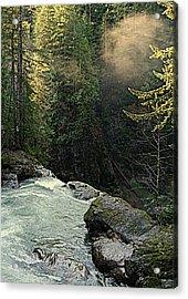 Top Of The Falls Acrylic Print by Lynn Bawden